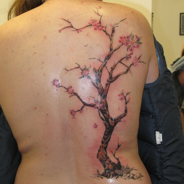 Cute japanese flowers on cherry tree tattoo on back