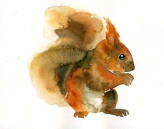 orange watercolor squirrel in profile