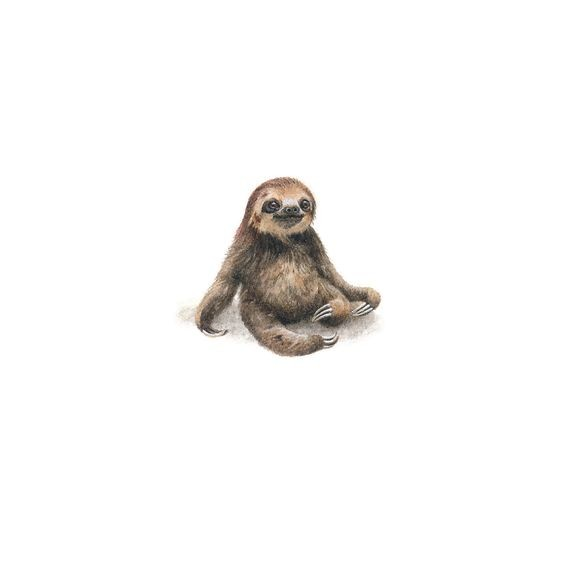 Cute small colorful sloth baby tattoo design