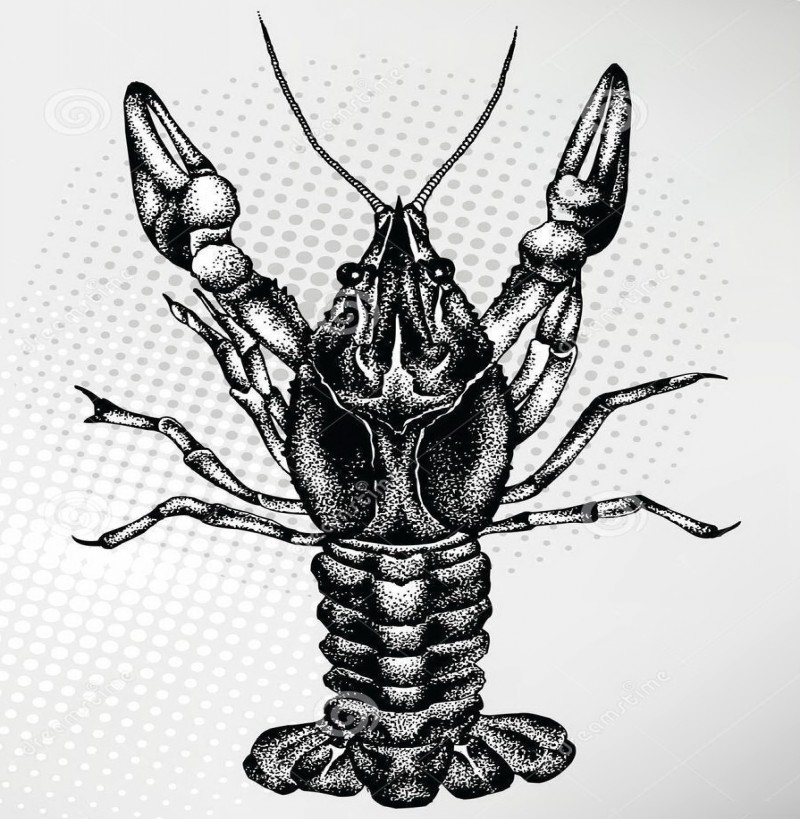 Dark dotwork-style lobster water animal tattoo design