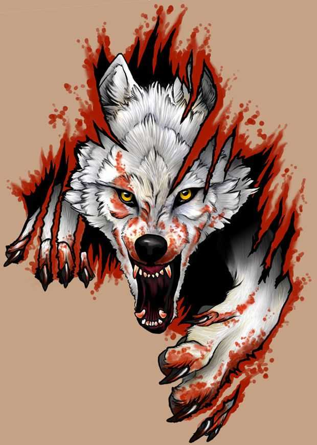 Dire blooded white wolf tearing brown background tattoo design