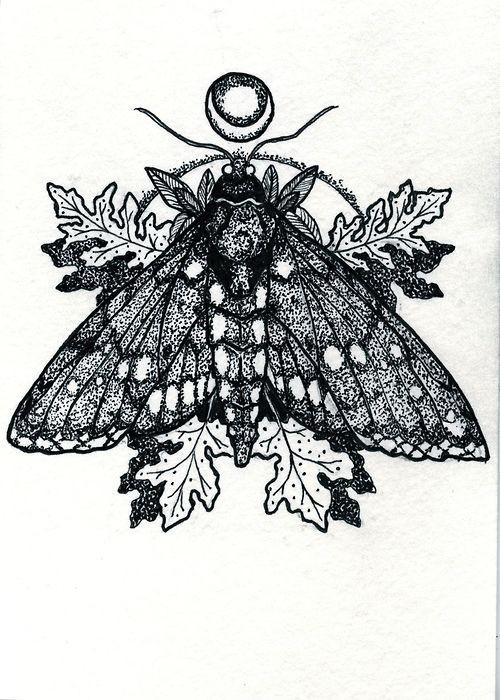 Dotwork moth on oak leaves background tattoo design