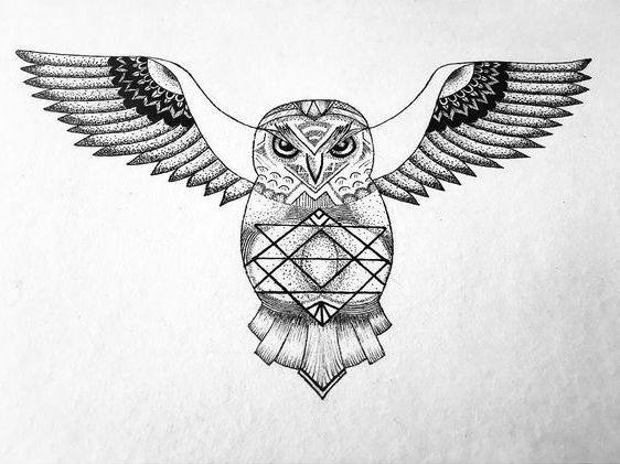 Dotwork owl with geometric drawing on belly tattoo design