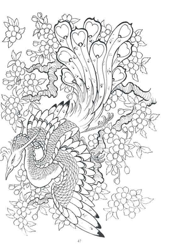 Dragon peacock flying down among cherry blossom tattoo design