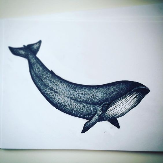 Elegant blue whale with dotwork effect tattoo design