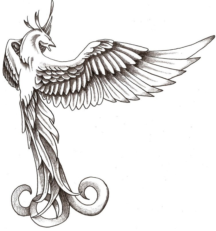 Elegant grey-ink phoenix bird from back tattoo design