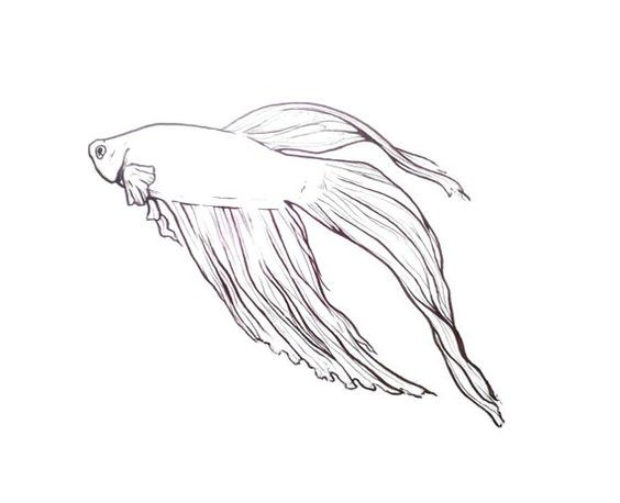 Elegant outline gold fish tattoo design