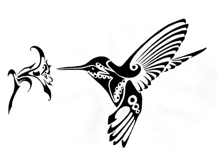 715dd94cb5a74 Excellent black tribal hummingbird sniffing hibiscus flower tattoo design