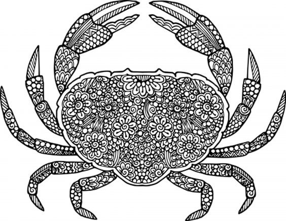 Exiting floral-patterned crab tattoo design