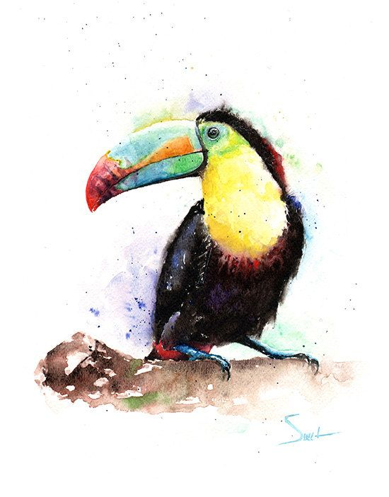 Exotic vivid color bird tattoo design