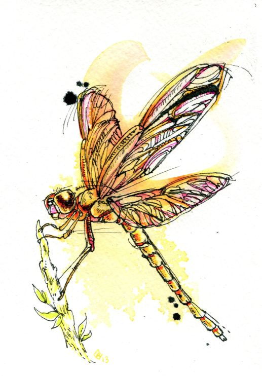 Fantastic black-contour dragonfly with yellow watercolor effect tattoo design