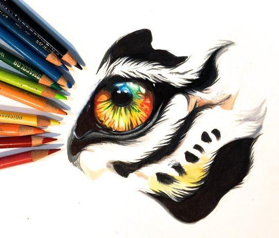 Fantastic colorful wild animal eye fragment tattoo design