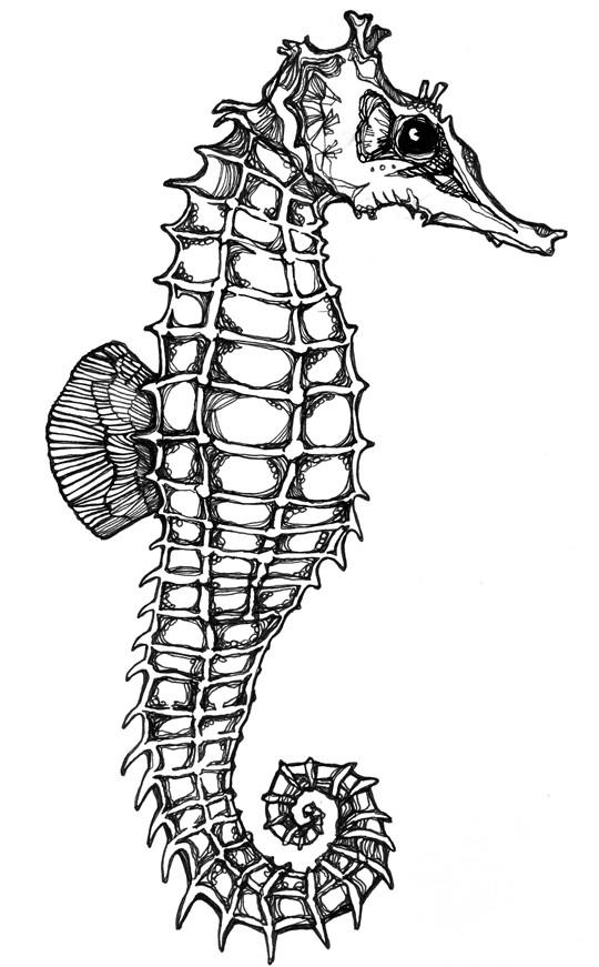 Fantastic uncolored seahorse tattoo design