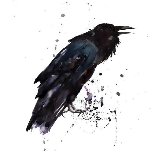 fantastic watercolor raven tattoo design tattooimagesbiz