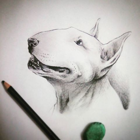 fantastic white bull terrier dog head tattoo design. Black Bedroom Furniture Sets. Home Design Ideas