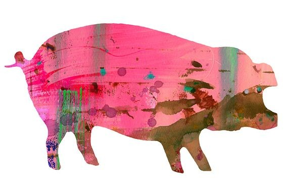 Fat pig with colored painted print tattoo design