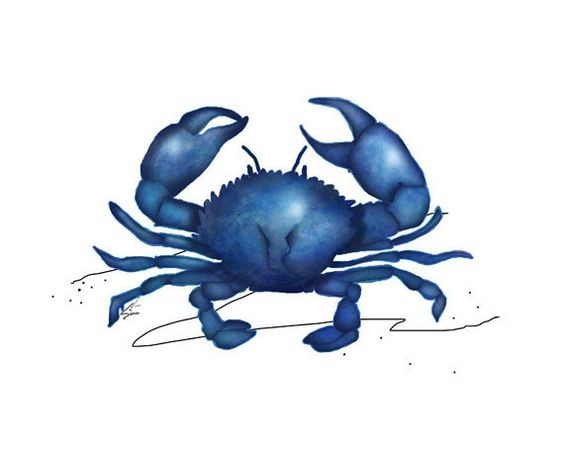 Fine single blue crab tattoo design