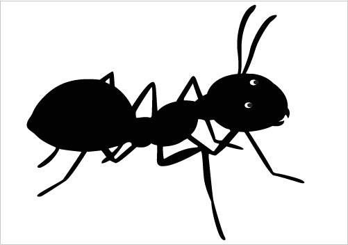 Cartoon black ants - photo#44