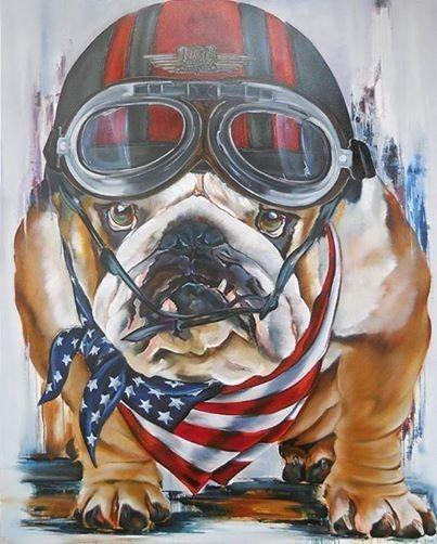 Funny colored americal bulldog pilot in helmet tattoo design