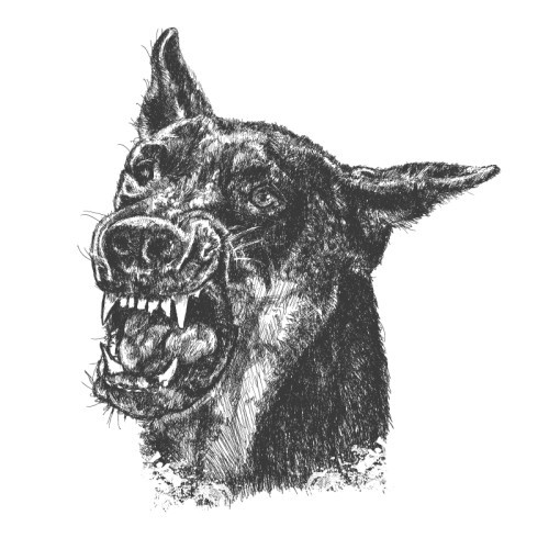 Furious grey-ink doberman head tattoo design