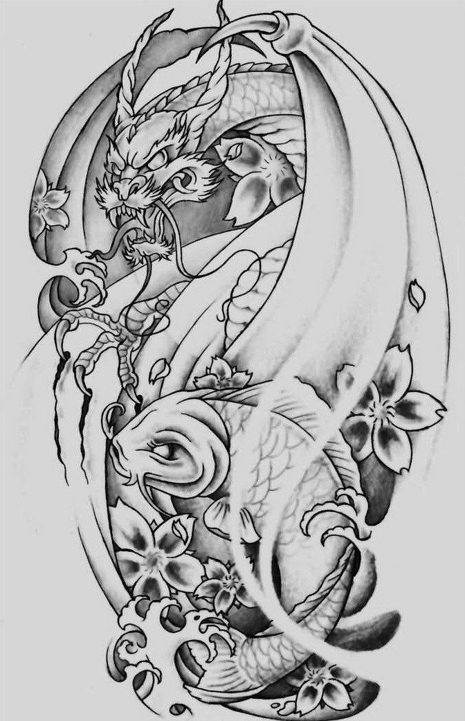Furious grey-ink dragon attacking koi fish in cherry blossom tattoo design