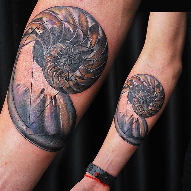 Tatuaggio del guscio del nautilo colorato in avambraccio stile geometrico
