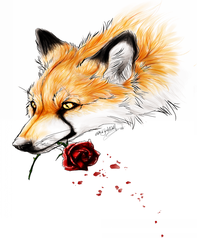 ginger fox keeping a red rose in the mouth tattoo design