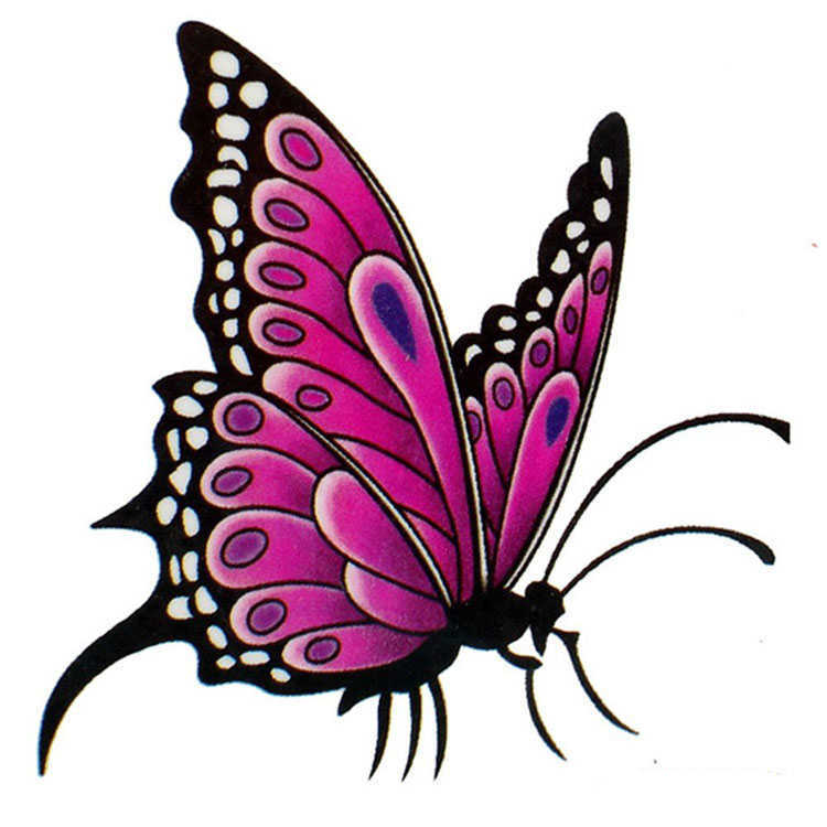 girly bright pink butterfly tattoo design. Black Bedroom Furniture Sets. Home Design Ideas