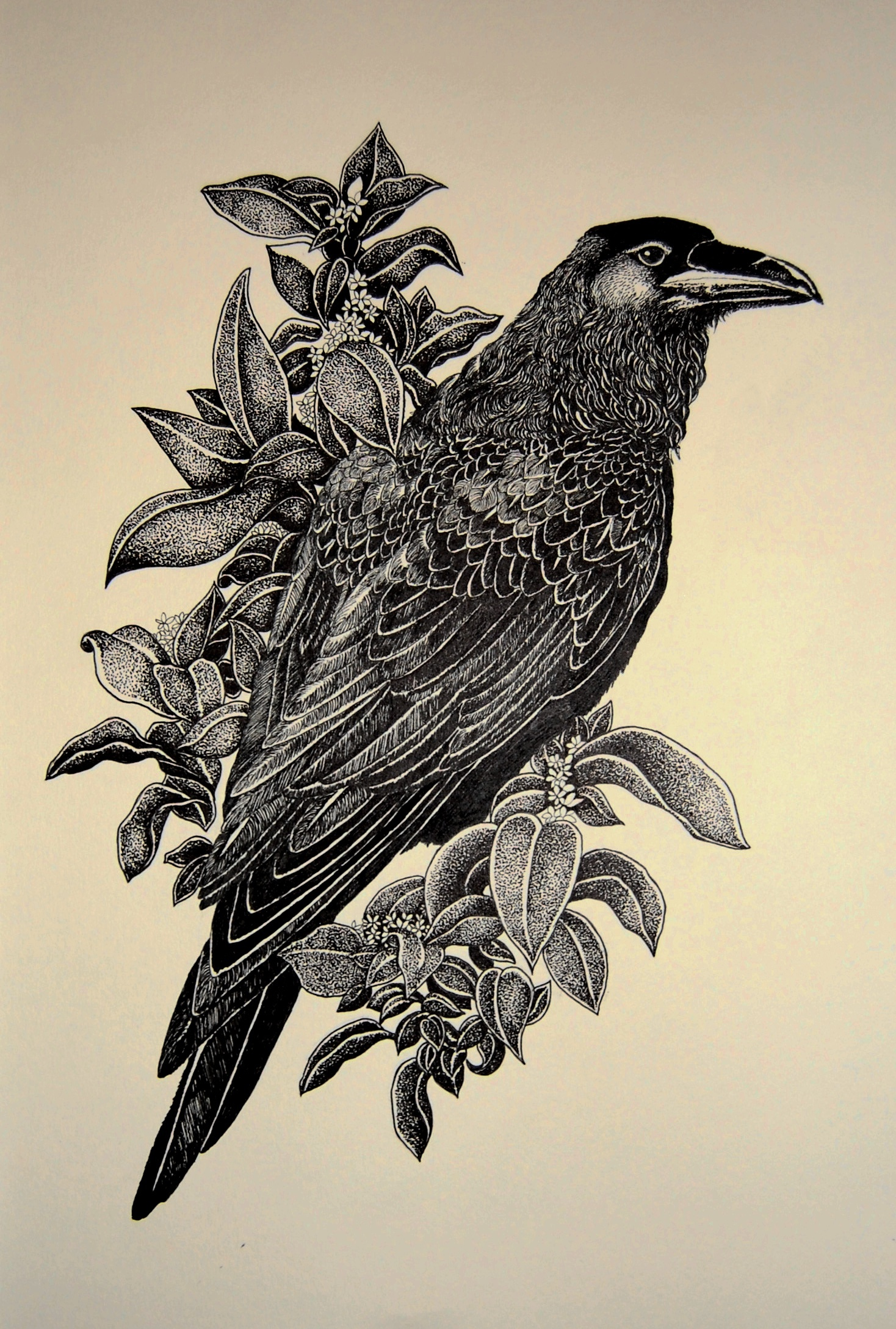 Glad black-and-white raven surrounded with flowers tattoo design