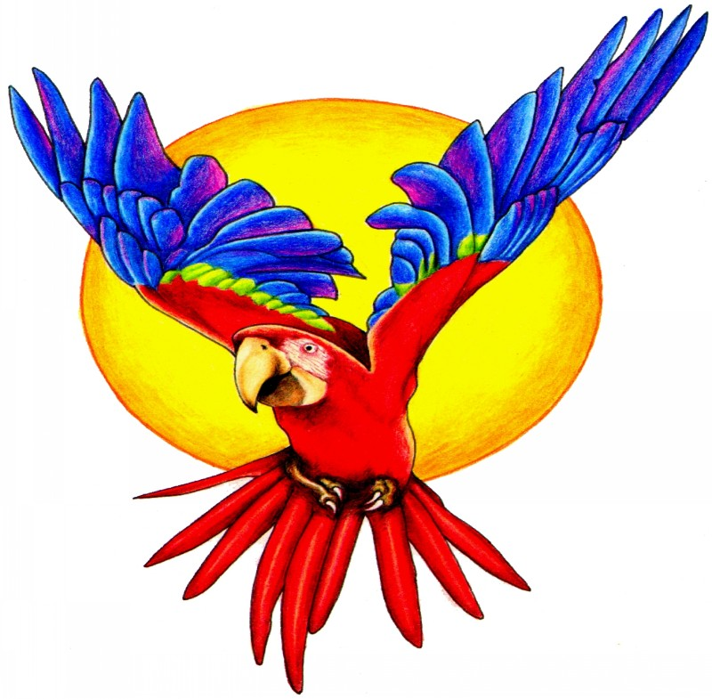 Glad blue-and-red parrot flying on yellow sun background tattoo design