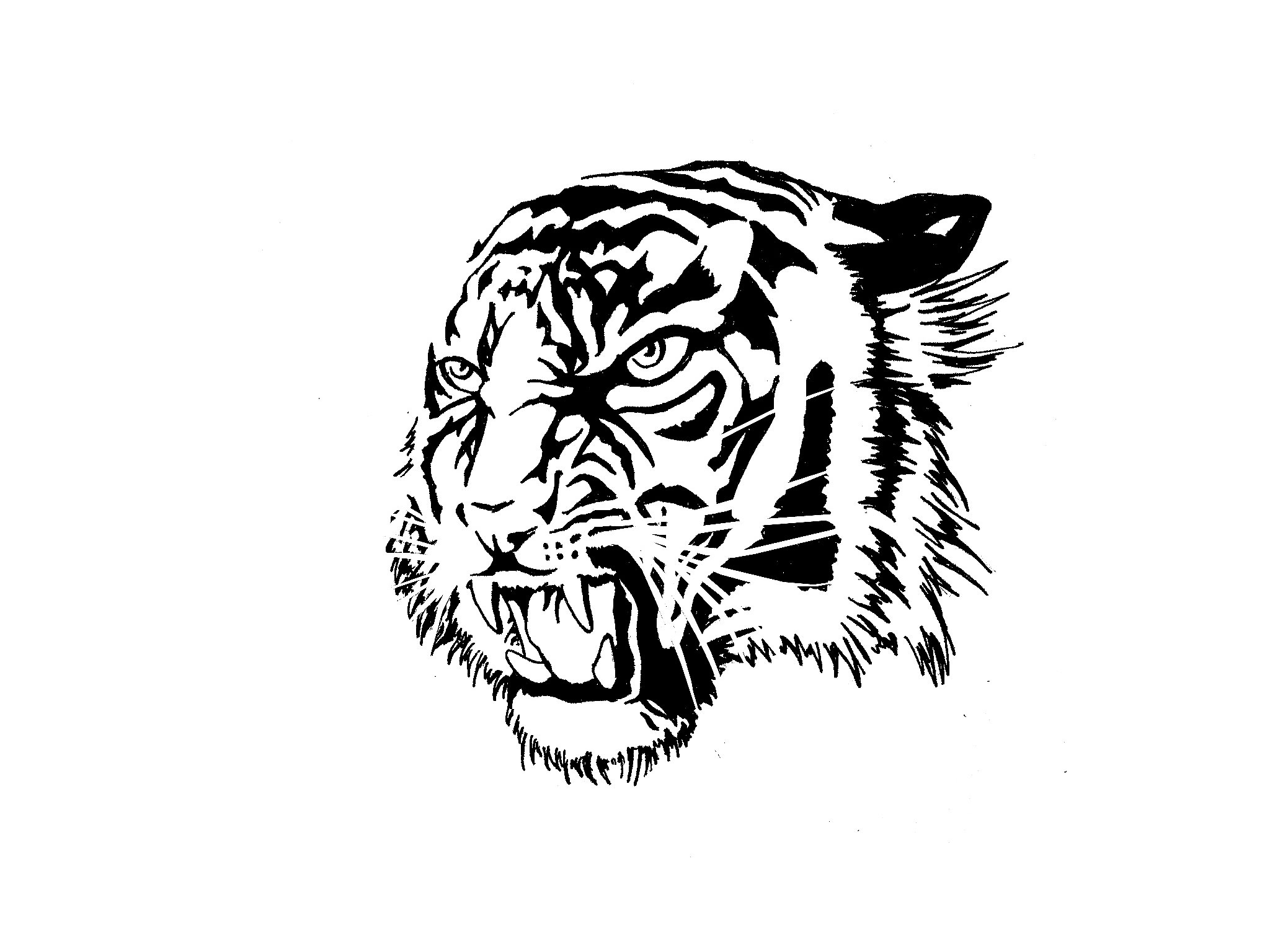 Gnarling tiger head tattoo design - Tattooimages.biz