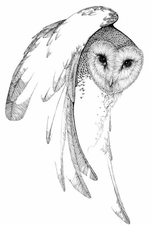 Good-natured grey-color owl tattoo design