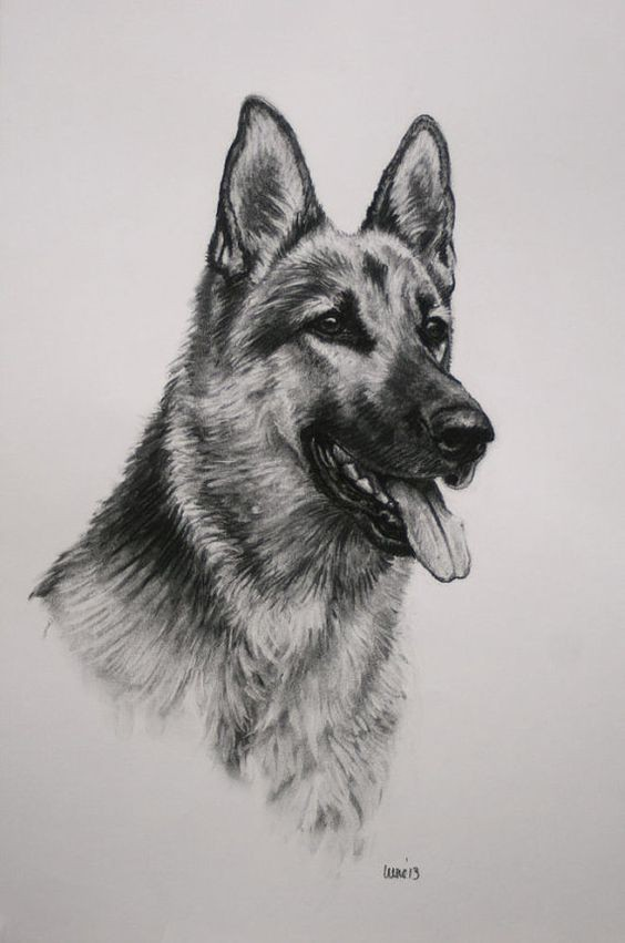 Good black-and-white german shepherd with open mouth tattoo design