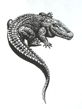 Good black-and-white reptile turning its back tattoo design