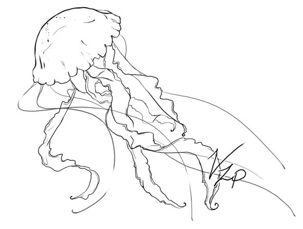 Good outline jellyfish tattoo design