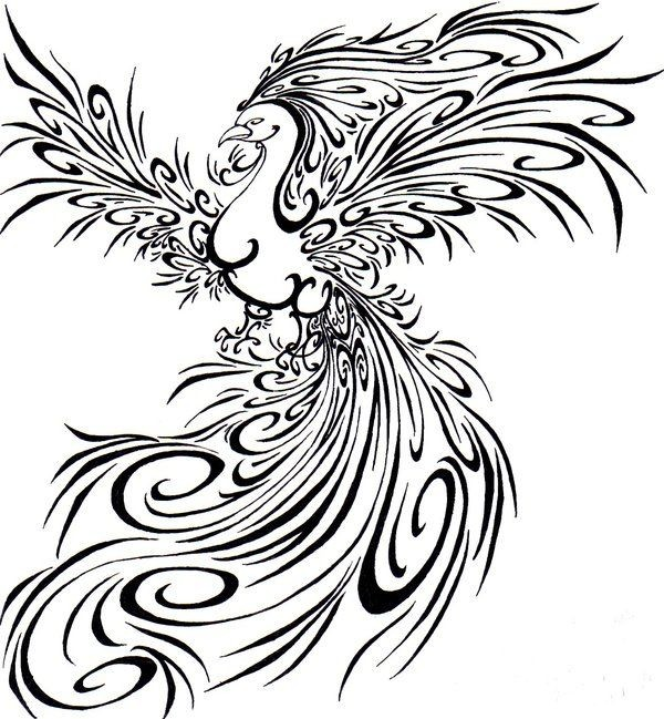 Gorgeous tribal phoenix with fluffy wings and tail tattoo design