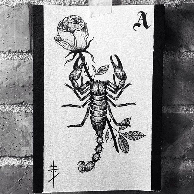 Great dotwork scorpion keeping rose stem on card background tattoo design
