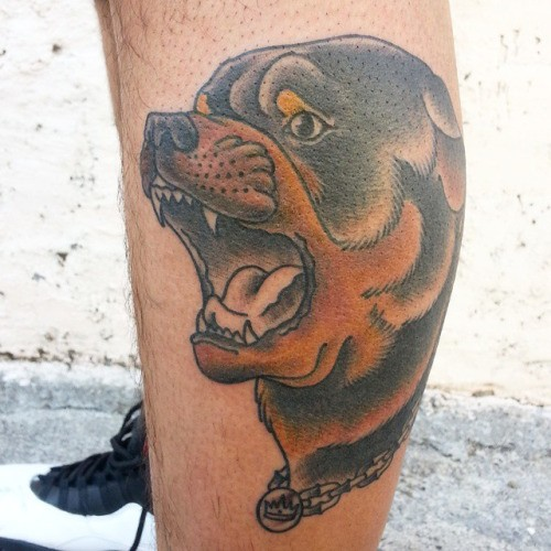 Great old school brown rottweiler dog tattoo on shin