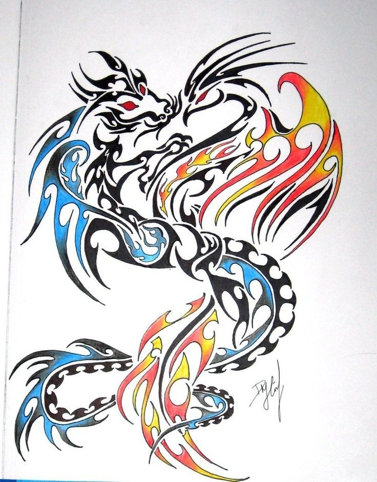 Great tribal style dragon and phoenix in blue and orange colors tattoo design