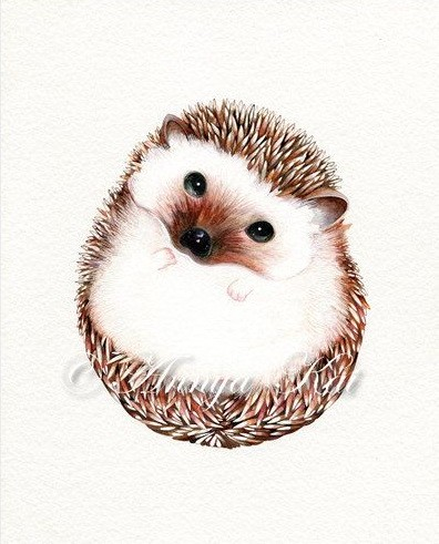 Great white belly hedgehog with brown spines tattoo design