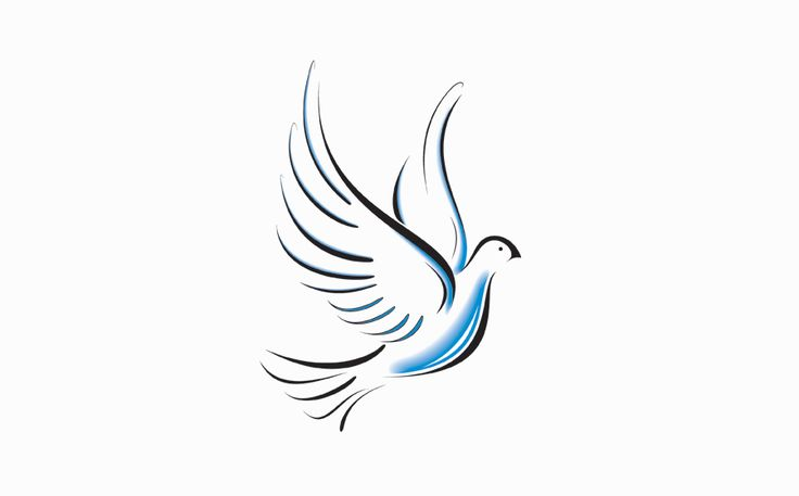 great white dove with blue belly tattoo design. Black Bedroom Furniture Sets. Home Design Ideas