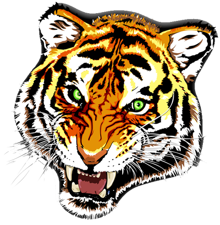 Green-eyed tiger muzzle tattoo design