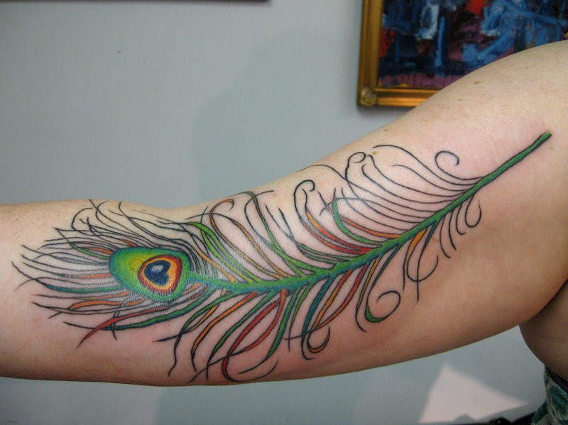 Green peacock feather tattoo on upper arm