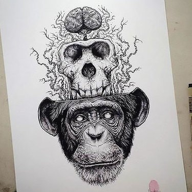 Grey-ink chimpanzee devided into skull and brains tattoo design
