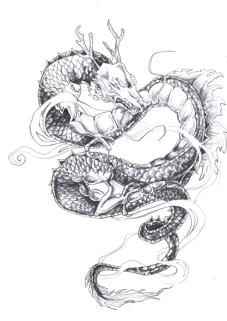Grey-ink horned asian dragon tattoo design by Lumosme