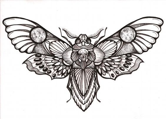 Grey-ink moth with detailed ornament tattoo design