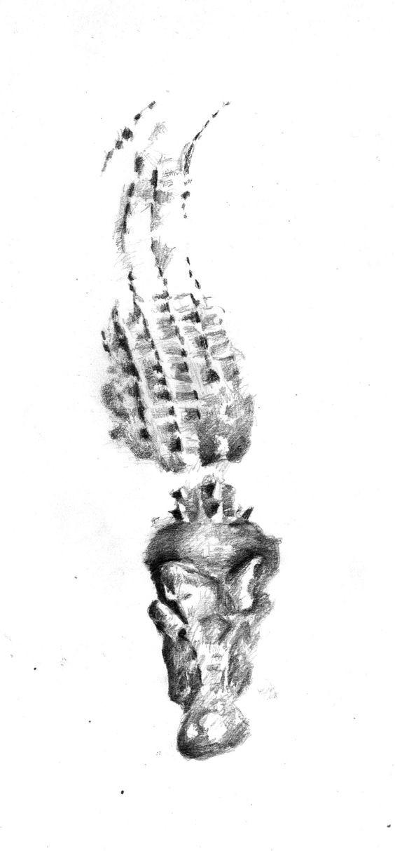 Grey-ink reptile trace tattoo design