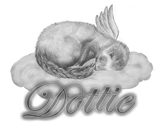 Grey-ink sleeping rodent angel in cloud with memorial name tattoo design