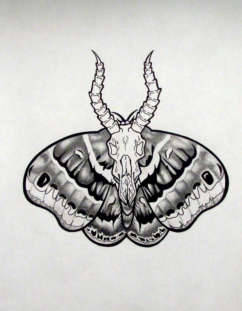 Grey death moth tattoo design with white horned goat skull by Katomzzz