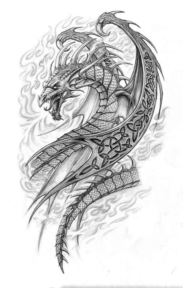 Grey dreamy dragon with celtic pattern on wing tattoo design